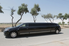 Houston stretch limo