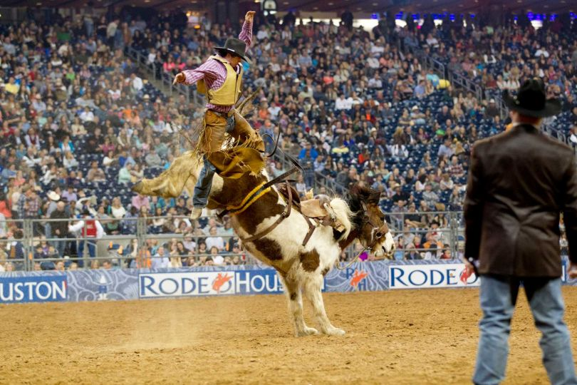 Houston Rodeo and Livestock Show